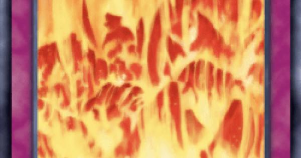 大火葬の評価と入手方法