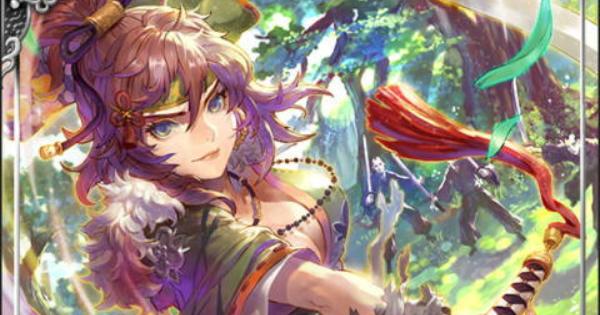 宮本武蔵SSR22の性能 | 二天剣姫