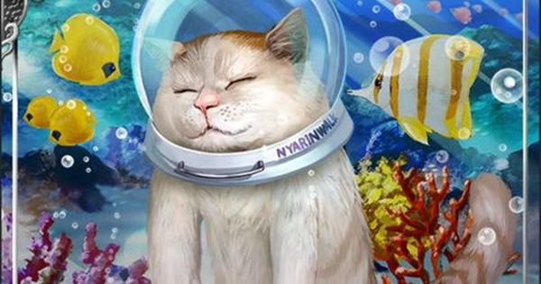 恵莉坐辺寿SSR1の性能 | 遊漂京猫