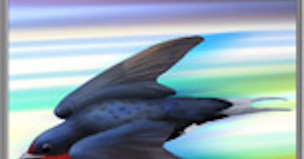 飛禽之益の性能 | 補助スキル