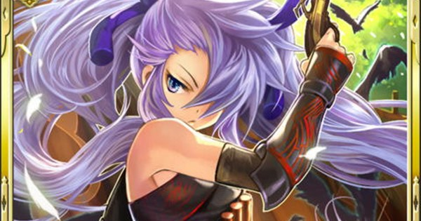 雑賀孫一SR11の性能   銃姫