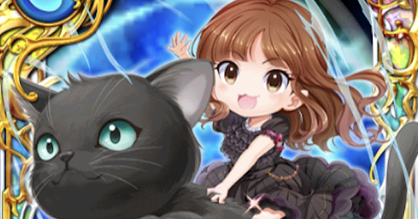 しょこたん(黒猫)の評価