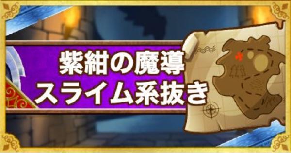 「呪われし魔宮」紫紺の魔導をスライム系抜きで攻略!
