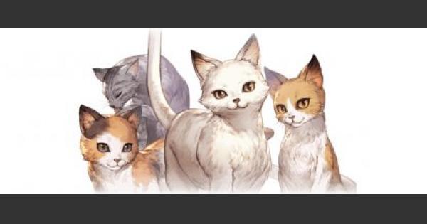 ビッグマーチ・オブ・ネコの評価 猫島狂詩曲報酬