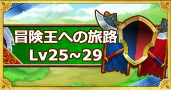 「冒険王への旅路レベル25・26・27・28・29」攻略!
