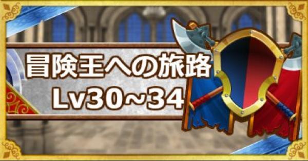 「冒険王への旅路レベル30・31・32・33・34」攻略!