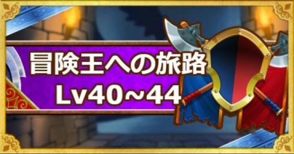 「冒険王への旅路 レベル40・41・42・43・44」攻略!