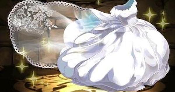 ウェディングドレスの評価とおすすめアシスト先|花嫁