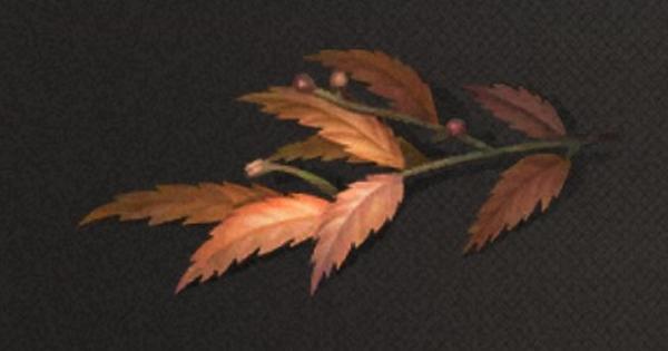 紅麻の葉の入手方法と使い道
