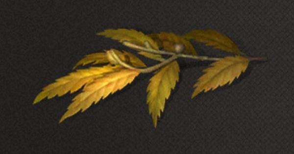 黄麻の葉の入手方法と使い道