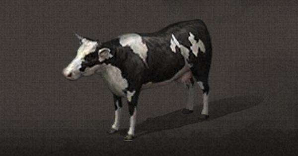 乳牛の入手方法まとめ