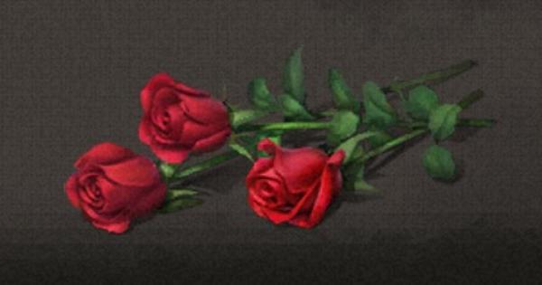 薔薇の花の入手方法まとめ