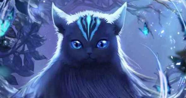 先見の猫イルア(SR)のスキルとステータス