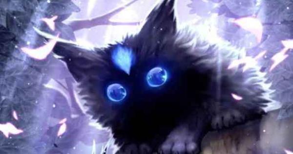 影の猫イルア(R)のスキルとステータス