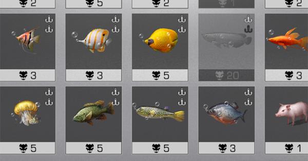 観賞魚が釣れない人向け!収集図鑑の超簡単な埋め方