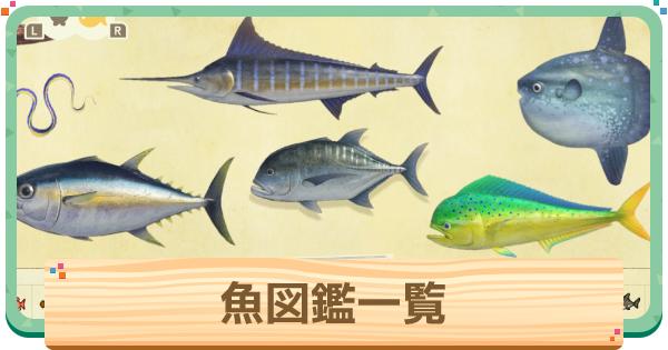 魚図鑑一覧 | 値段と魚影・出現時間