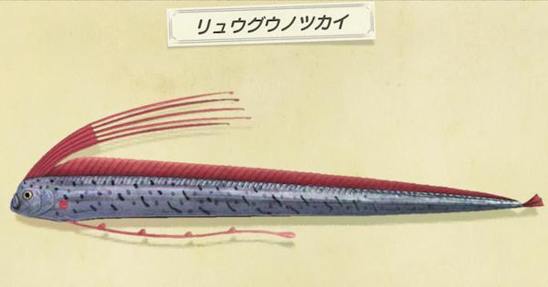 あつ 森魚 の 値段