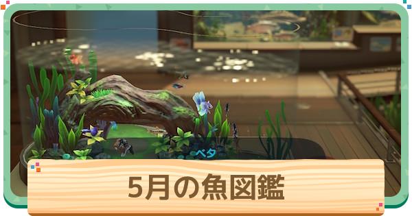 森 魚 図鑑 あつ 【あつ森】虫図鑑(値段付き)【あつまれどうぶつの森】|ゲームエイト