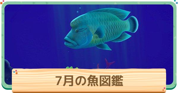 月 あつ森魚 7