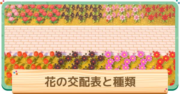 あつ 森 花 の 交配 の 仕方