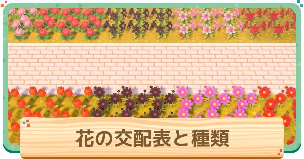 花の交配表と種類一覧 | 交配の植え方