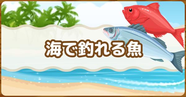 海で釣れる魚図鑑・出現時間一覧