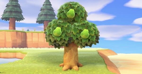 あつ 森 フルーツ 食べる と