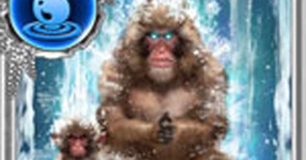 水猿連衡の性能 | 奥義