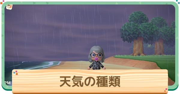 雨 天気 あつ 森