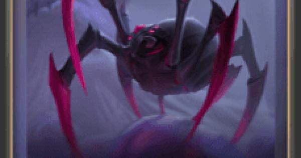 屋敷に潜む蜘蛛の情報