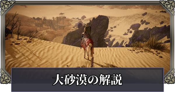 大砂漠の遊び方と注意点