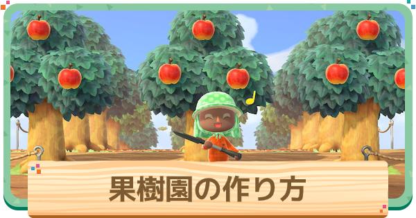 果樹園の作り方 | レイアウト例と看板のマイデザイン
