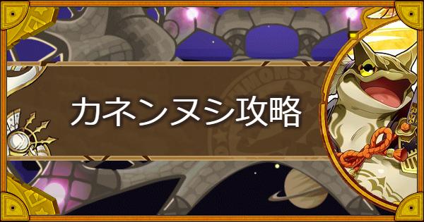 【神】金色横綱(カネンヌシ)攻略とおすすめキャラ