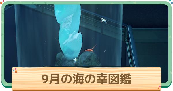 魚 あつ森 南半球 9月