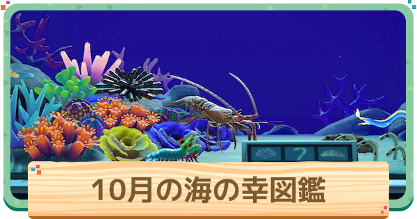 10月の海の幸一覧 | 値段と出現時間・場所