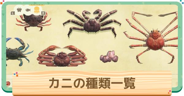 カニ(蟹)の種類一覧と値段
