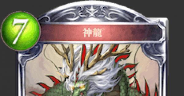 神龍の評価と採用デッキ