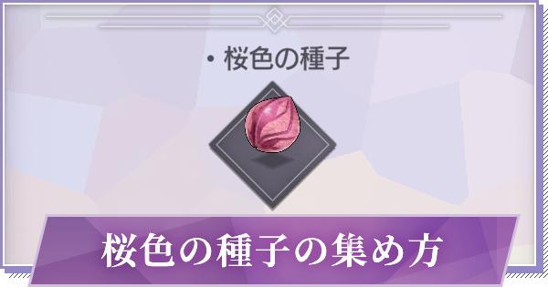 桜色の種子の効率的な集め方