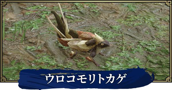 ウロコモリトカゲの効果と出現場所