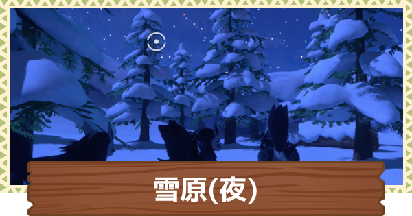 雪原(夜)