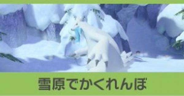 雪原でかくれんぼの攻略と報酬