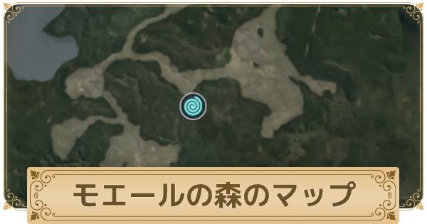 モエールの森のマップ情報