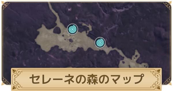 セレーネの森のマップ情報