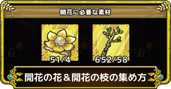 開花の花&開花の枝の集め方と種類