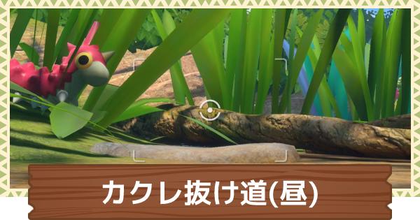 カクレ抜け道(昼)の出現ポケモンとルート分岐