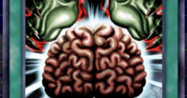 洗脳-ブレインコントロールの評価と入手方法