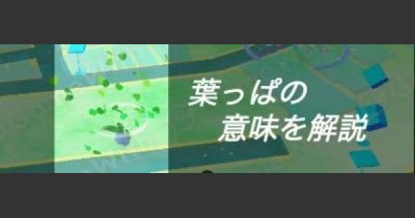 葉っぱ/草が舞う場所の意味