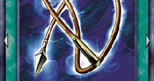 電撃鞭の評価と入手方法
