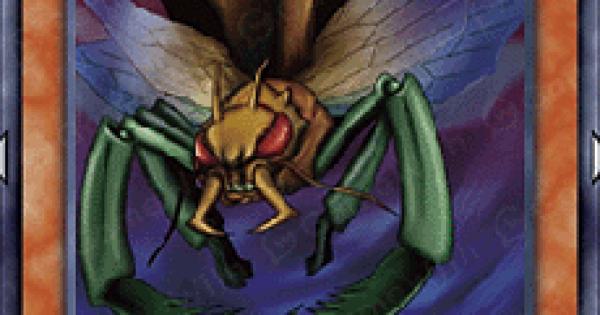 空の昆虫兵の評価と入手方法
