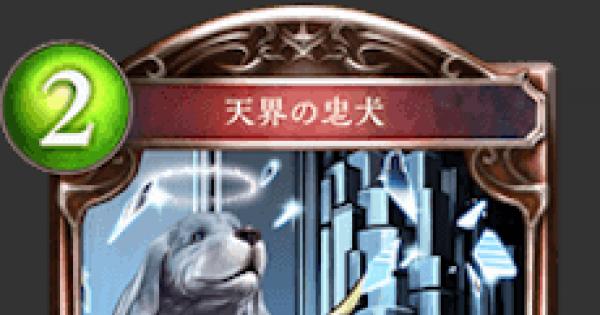 天界の忠犬の評価と採用デッキ